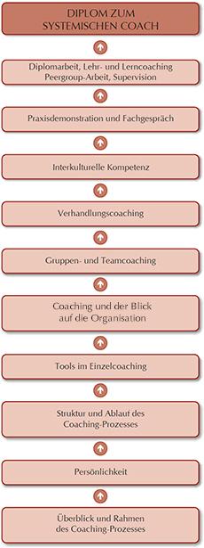 Karrierebaum-Coaching-Lehrgang